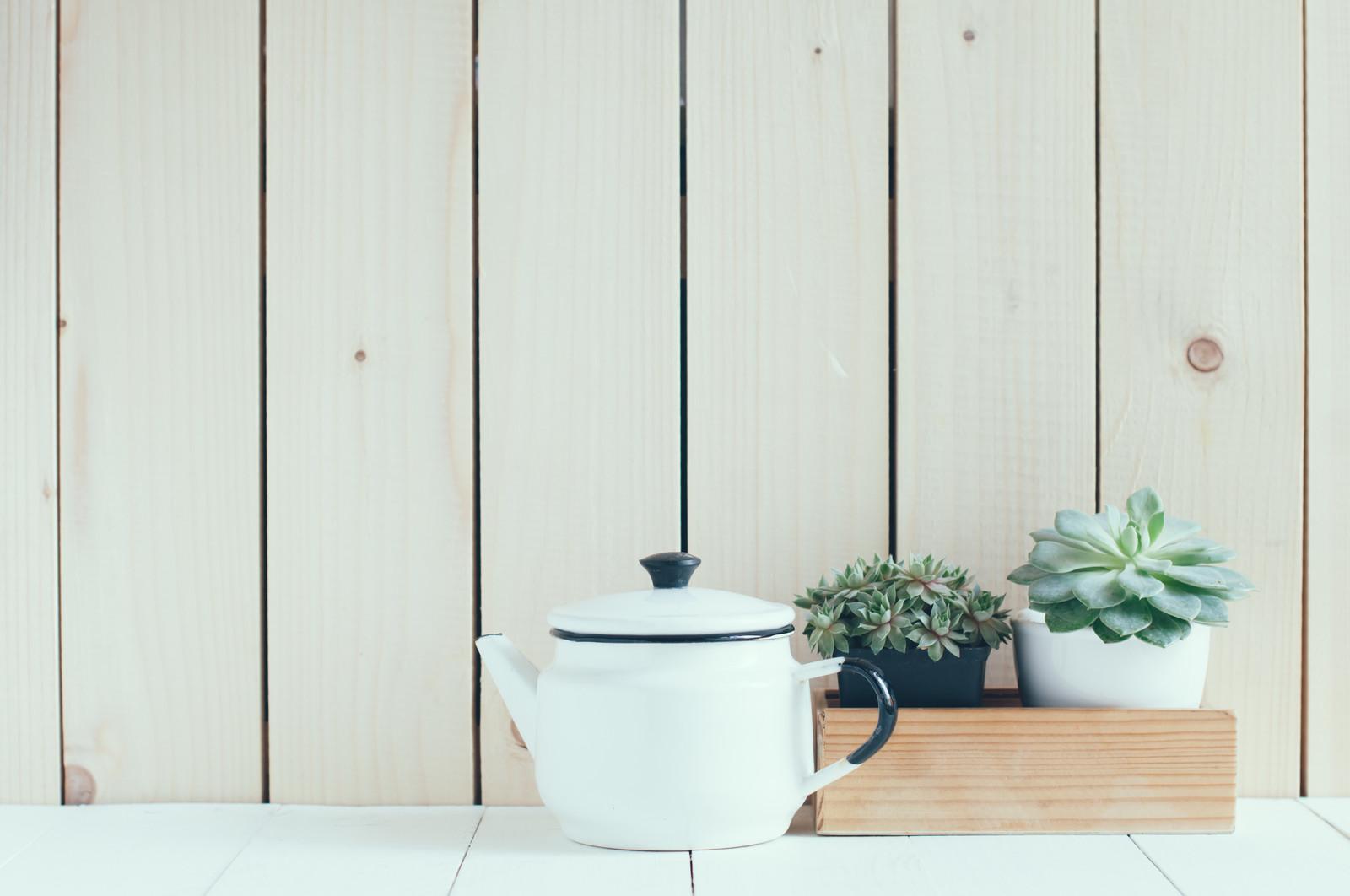 Las mejores plantas para interiores blog de dia for Mejores plantas para interior