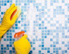 Trucos para limpiar el horno blog de dia - Trucos para limpiar azulejos ...
