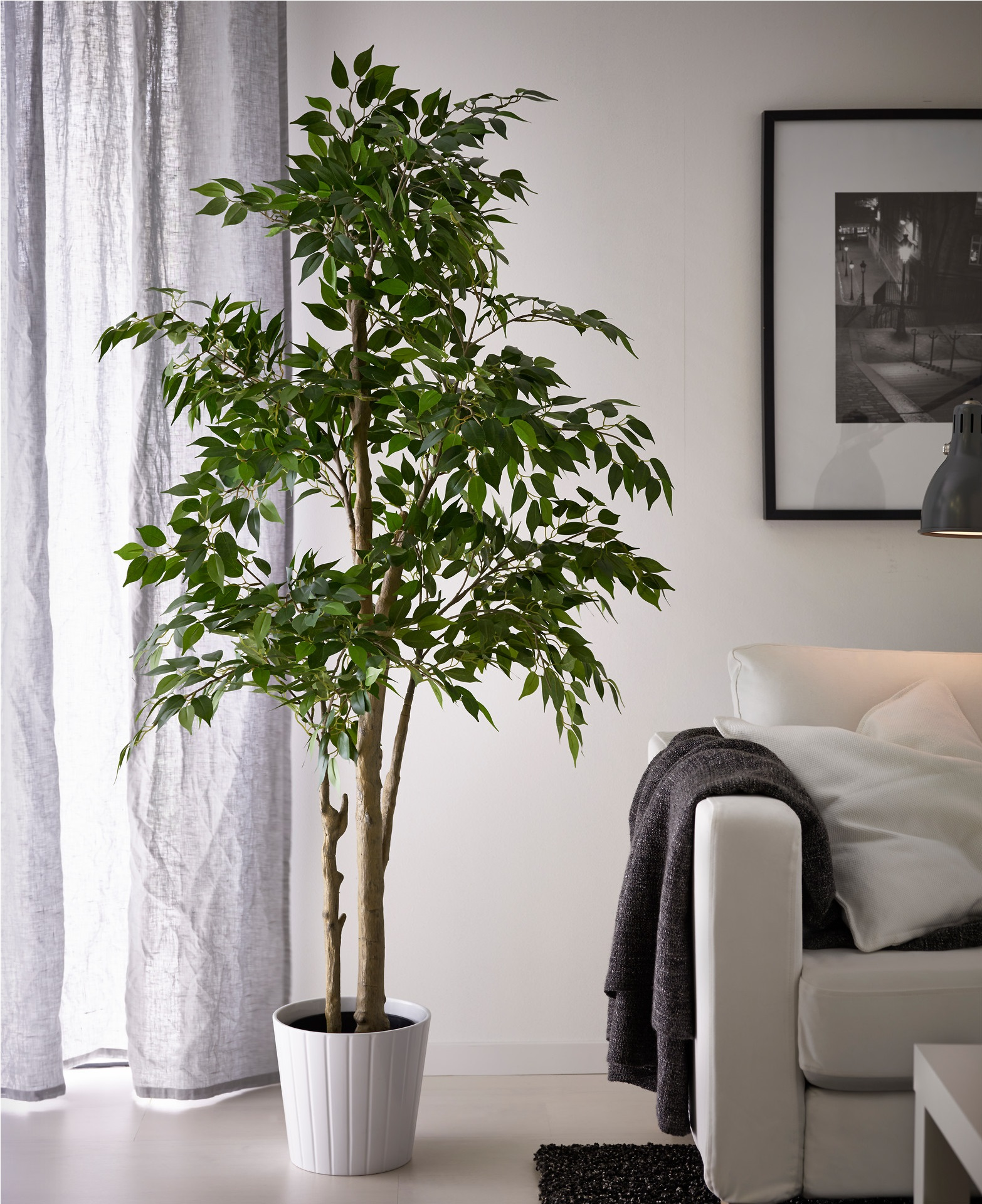 fake living room trees c 243 mo dividir espacios grandes de dia 15033