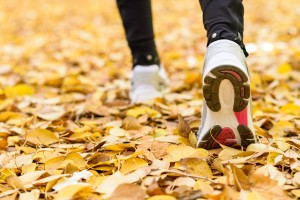 Deportes saludables para practicar en otoño