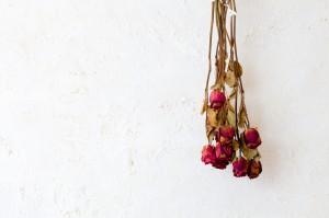 Decora con hojas y flores secas enmarcadas