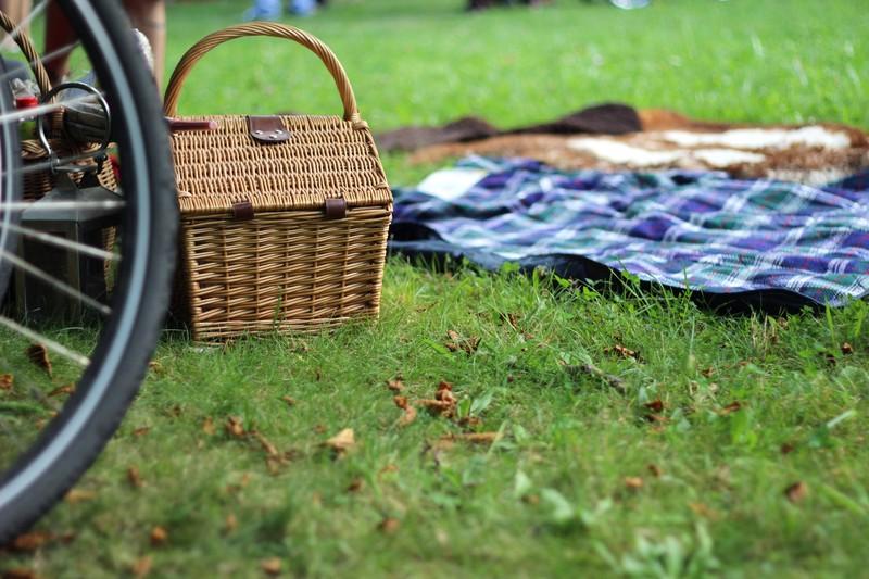 picnic otoño