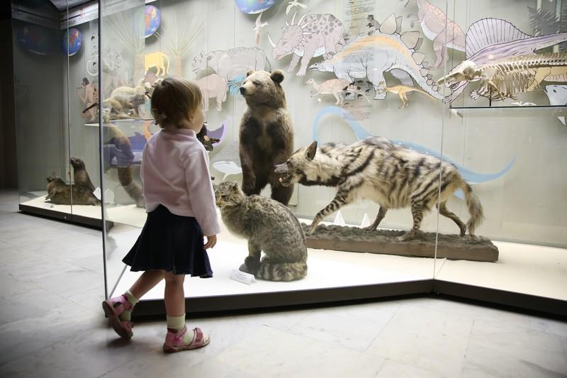 museo niños