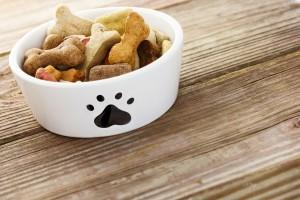 Dejemos impecables los cuencos de comida de nuestra mascota