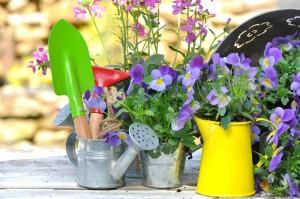 Prepara tu casa para la primavera