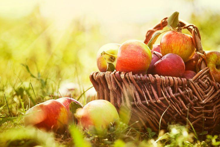 Beneficios de comer una manzana al día