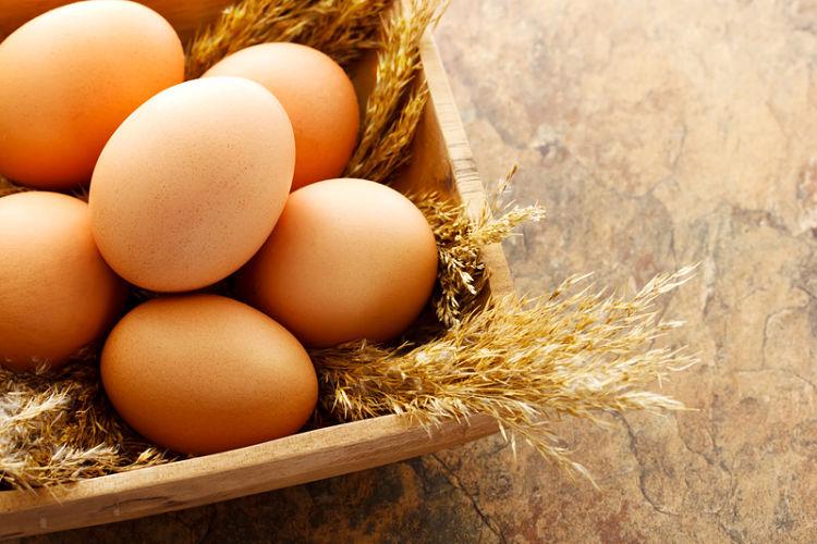 C mo saber si un huevo est malo blog de dia for Como saber si un pozo esta legalizado