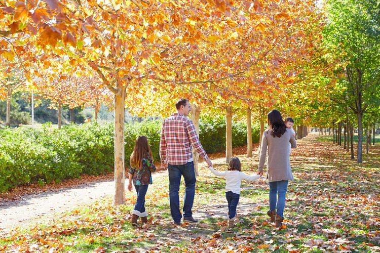 Planes diferentes para hacer en otoño