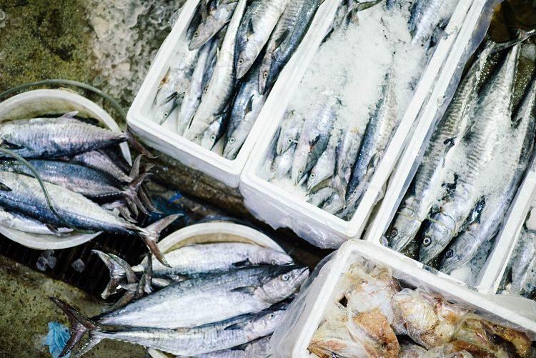 pescado sostenible