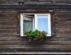 limpiar las ventanas