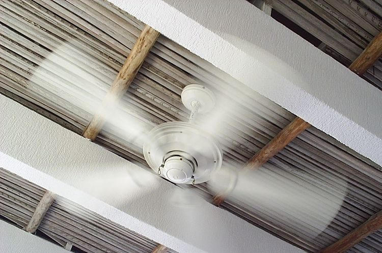 Cómo limpiar y mantener a punto tu ventilador de techo para el año que viene