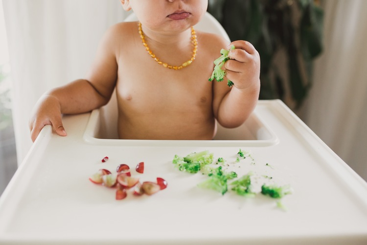 alimentos baby led weaning